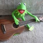 "Kermit plays "" Ukulele Lady """